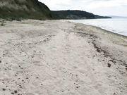 Anale seks op het strand